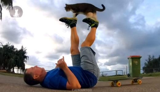 世界で最も才能ある猫ちゃん!トレーニングされた「ディドガちゃん」が凄い!