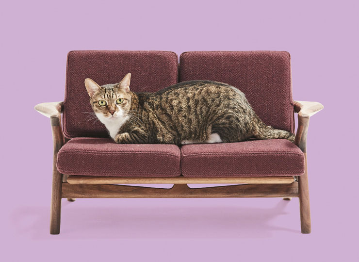 Banard 2Pソファ ネコ家具