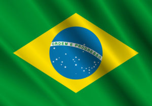 ブラジルで人気の猫の名前