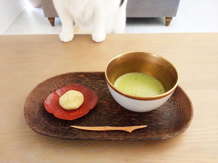 和菓子やスイーツ・洋菓子系の猫の名前