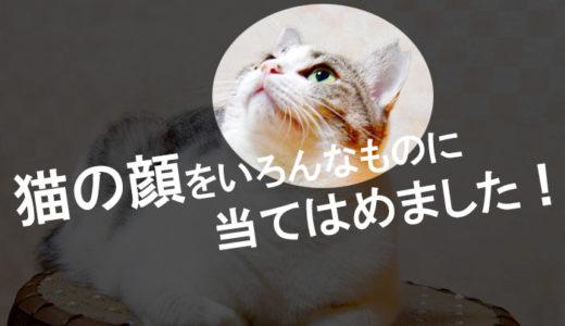 いろんな動物や物を猫にしちゃうアートが面白すぎる!