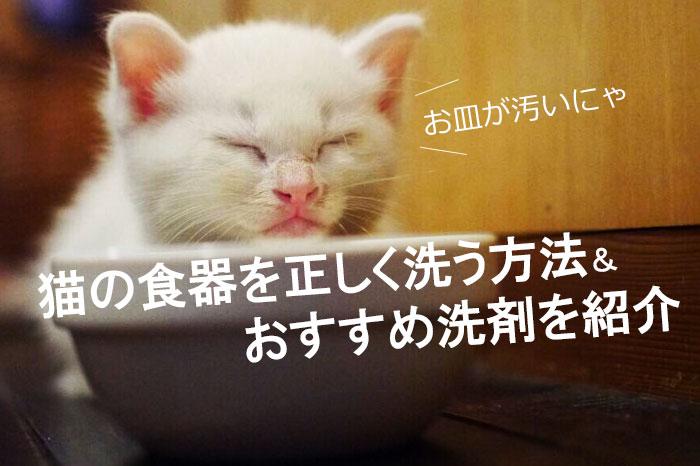 猫の食器ってどうやって洗うのが正しいの?洗い方やおすすめ洗剤を紹介します。