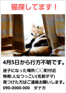 猫迷子ポスター スマホアプリ作成