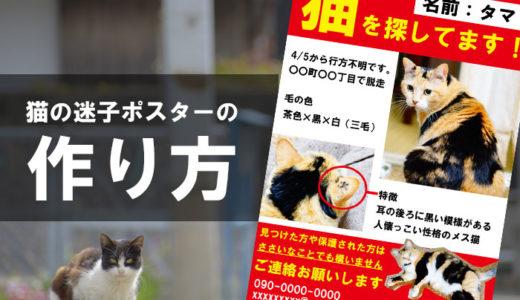 猫の迷子ポスターやチラシ作り!アプリやPCでの作成や印刷方法を紹介