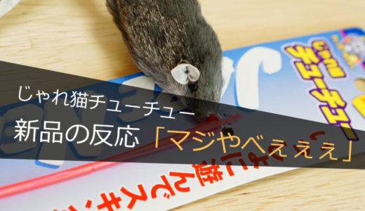 『じゃれ猫チューチュー』のオモチャを新しくしたら愛猫喜びすぎた!