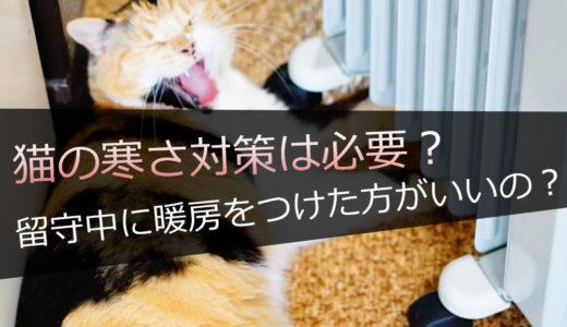 猫の寒さ対策は必要なの?留守中に暖房をつけた方がいいのか判断する方法
