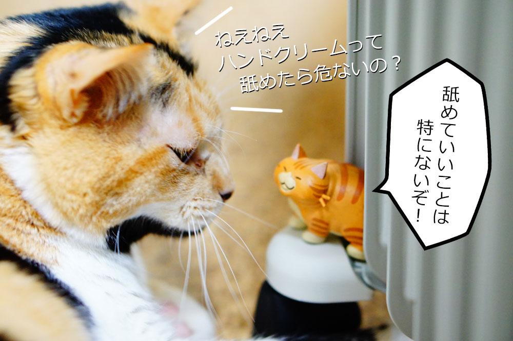 猫がハンドクリームを舐めるのはどれだけ危険?