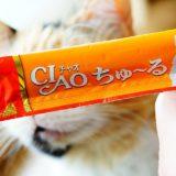 【要注意】猫にチャオちゅーるを食べさせるのはちょっと危険?