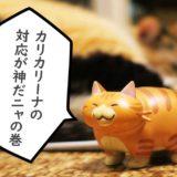 カリカリーナの対応が神!丈夫な猫の爪とぎを買うならここが良いかも!