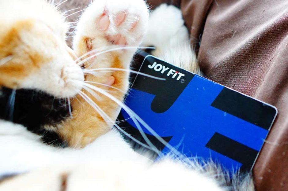 ジョイフィット24はネットで退会は無理!必要なものや再入会の金額について