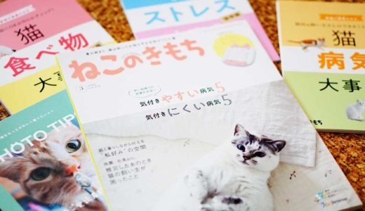購読してみた!雑誌『ねこのきもち』を見た感想や付録について紹介するよ。