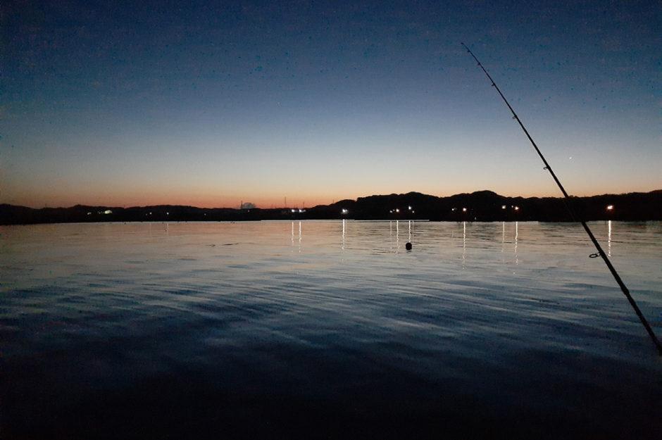 タマのご飯を求め釣りに行ってきた