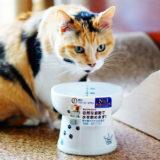 猫壱の脚付ウォーターボウルでたくさん水を飲むのかレビューを書いた。