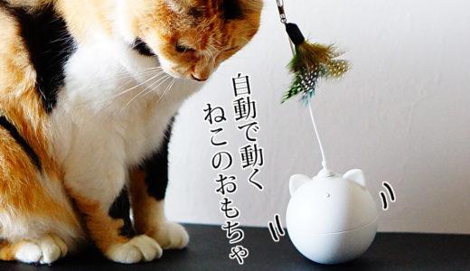 BENTOPALの電動猫じゃらしを購入!光ってクルクル回る可愛いオモチャ(colorful cat toy)