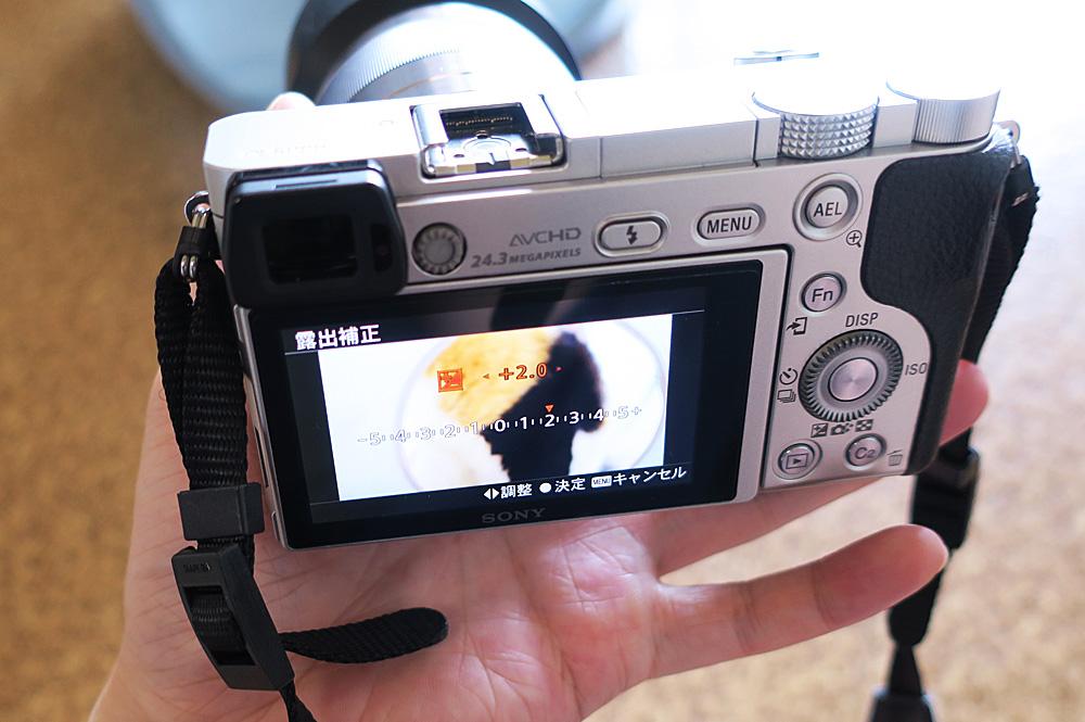 猫を撮るためのカメラの設定
