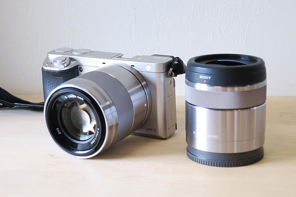 猫撮影コツ 良いカメラとレンズを購入する