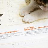 余計な治療をしない獣医さんに猫にワクチンは必要なのか聞いてきた。