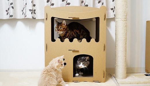 【raku】の猫用爪とぎキャットハウスをレビュー!みんな満足で買ってよかった。