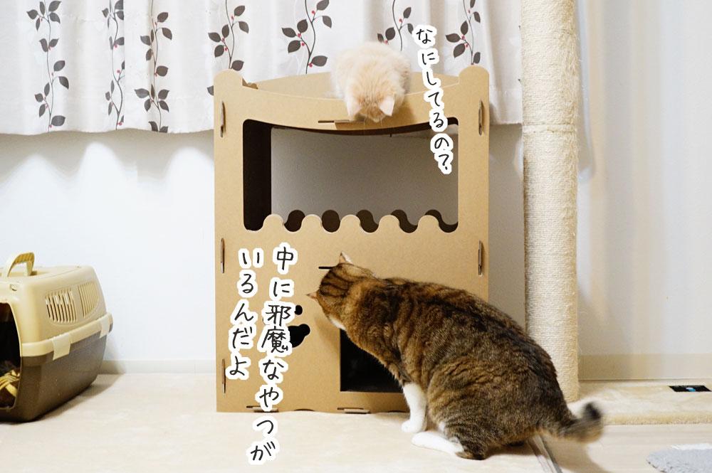 【raku】の猫用爪とぎキャットハウスに大満足