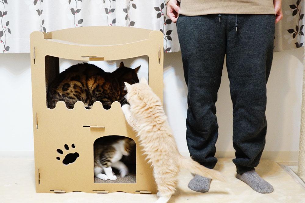 【raku】の猫用爪とぎキャットハウス 大きさ