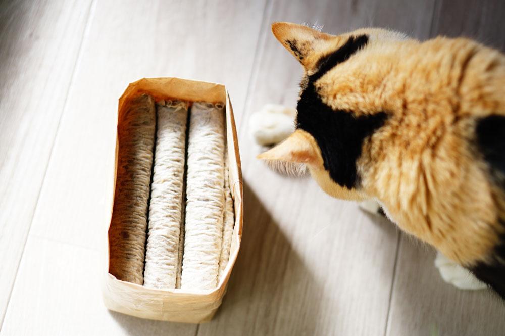 無印良品の猫草をレビュー
