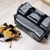 【レビュー】猫の防災キャリー「SOSペットバッグ」を買ってみた。