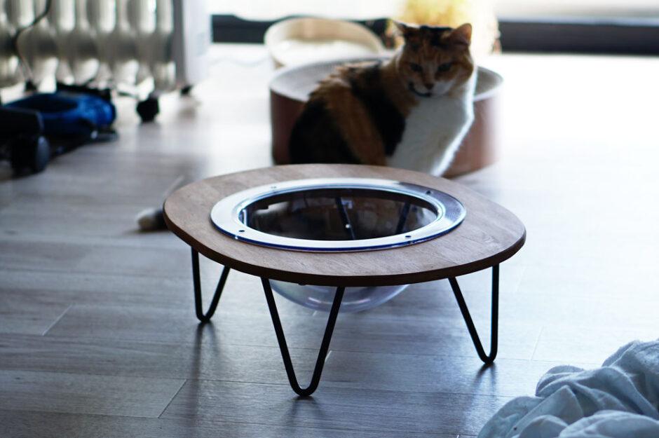宇宙船(クリアボウル)の猫ベッドをDIYしてみた!作り方を紹介します。