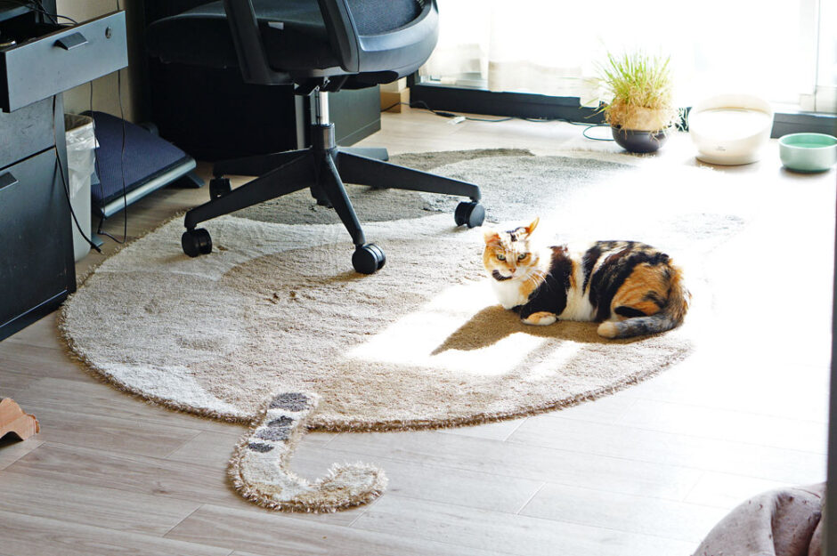 アントロンホームの猫型ラグ「ブチマル」が可愛すぎてヤバかった!