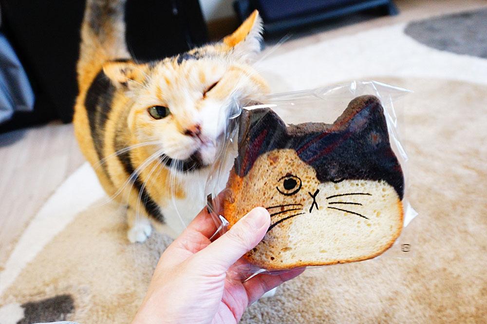 ねこねこ食パン レビュー