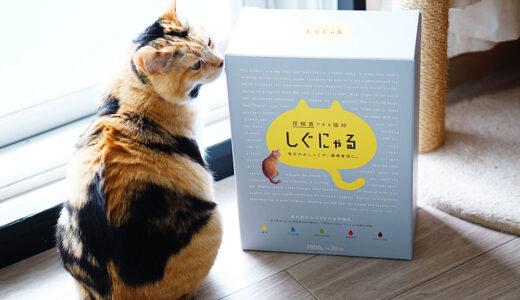 色が変わる猫砂「しぐにゃる」で猫の健康チェックをしてみた【口コミレポ】