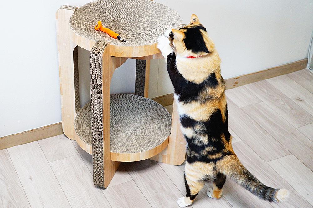 猫壱 バリバリボウルタワー やや不安定