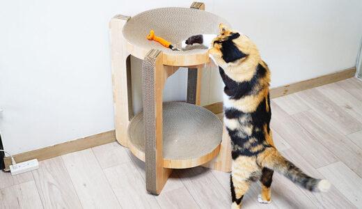 【口コミレポ】即完売した猫壱のバリバリボウルタワーを買ってみたよ!