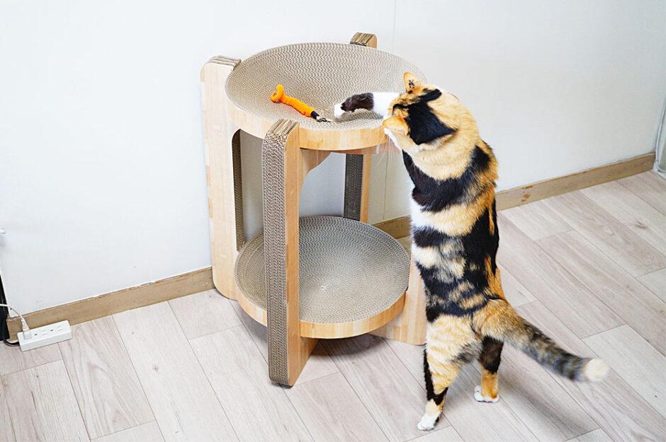 口コミレポ即完売した猫壱のバリバリボウルタワーを買ってみたよ!