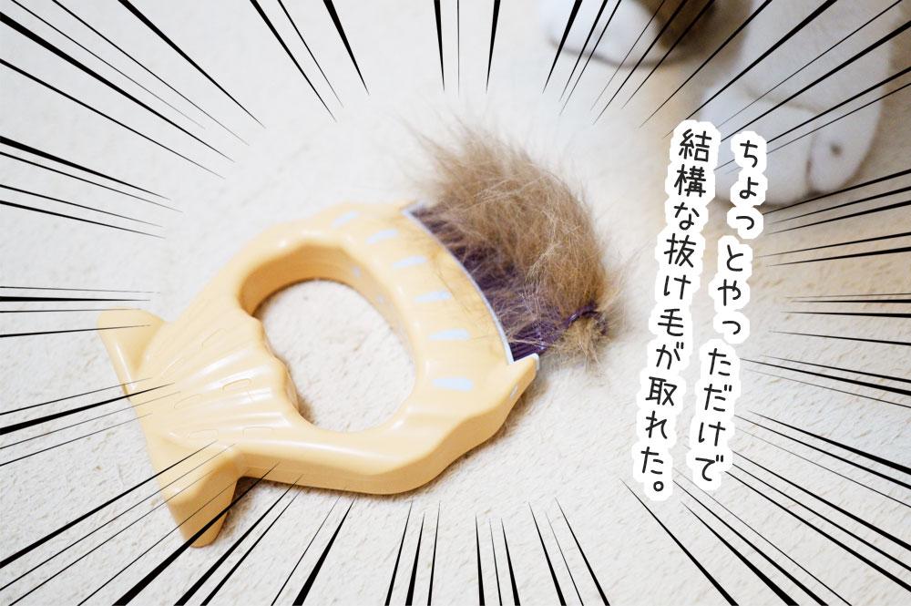 ピロコーム 短毛猫 感想