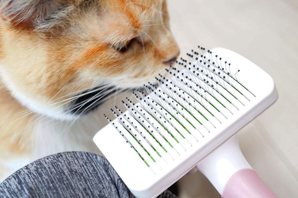 猫におすすめ「Petacc」のスリッカーブラシ