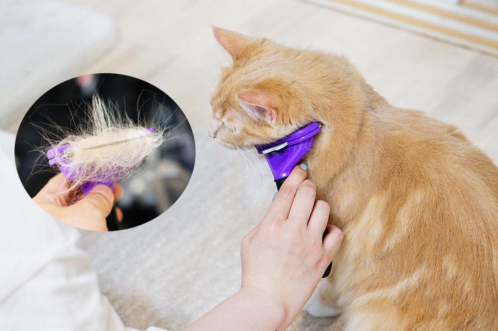 ファーミネーター 猫 長毛 取れすぎ