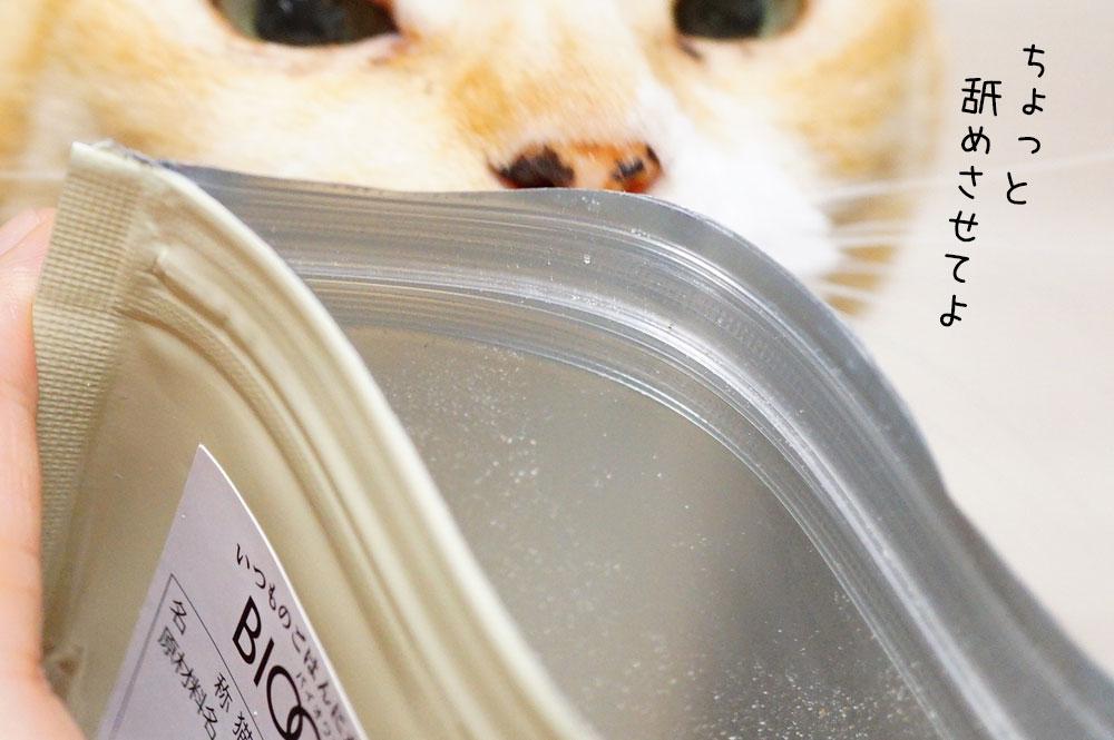 猫 バイオワン「しなやかサポート」をレビュー