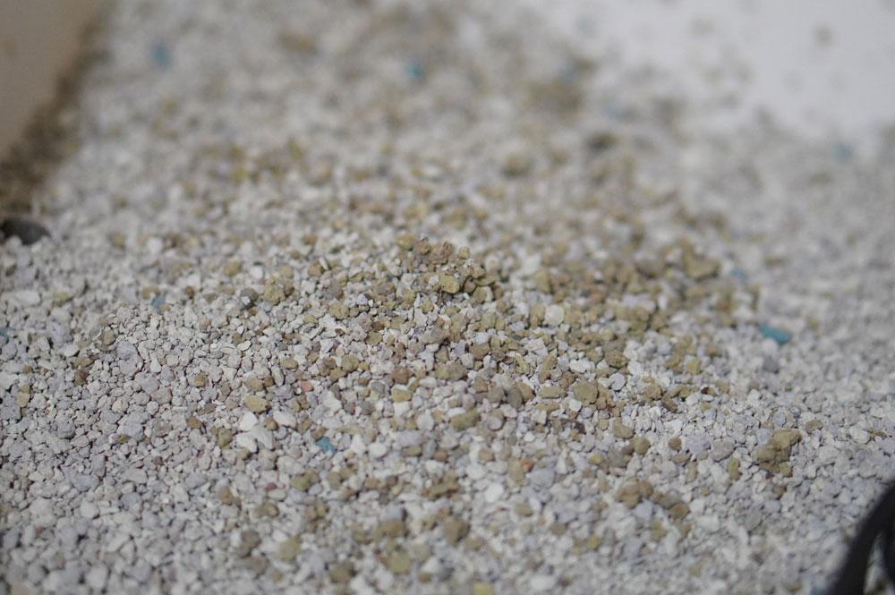 砂の固まり具合はまあ良い