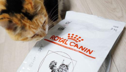 危険はない?評判がいいロイヤルカナンで猫の調子がすごく変わった話